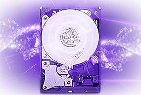 WD 1TB Purple SATA Surveillance Hard Drive | WD10PURZ-Western Digital